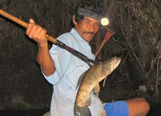Spear_fishing_Peru_cropped