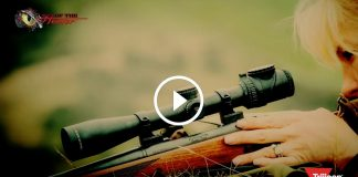 Trijicon AccuPoint Scopes 2016