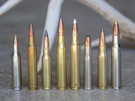 deers, deer hunting, deer cartridges, rifles, guns,